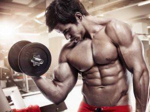 Flexuline Muscle Builder - forum - France - crème